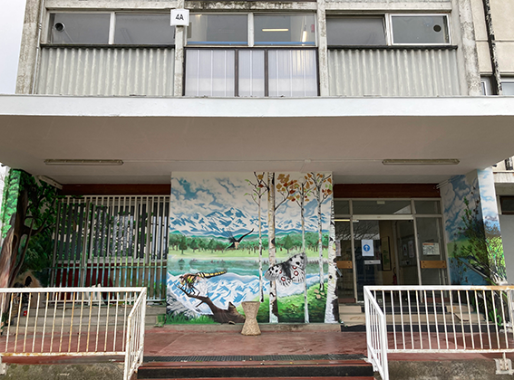 Fresque biodiversité